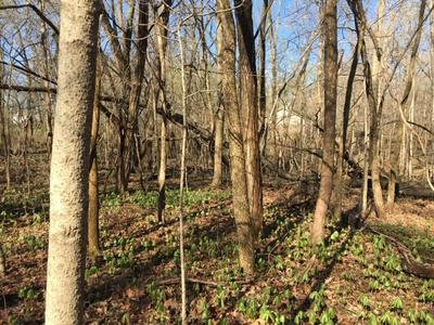 LOT 20 BICYCLE BLUFF LANE, Delphi, IN 46923 - Photo 2