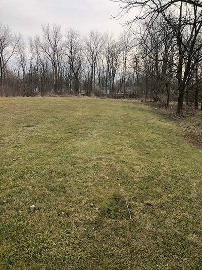 VACANT LAND SOUTH IROQUOIS STREET, Goodland, IN 47948 - Photo 1