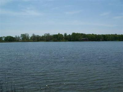 TBD W ORLAND ROAD, Angola, IN 46703 - Photo 2