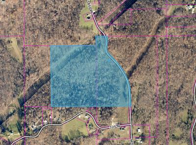 31.5+/- ACRES CO RD 850 W, West Baden, IN 47469 - Photo 1