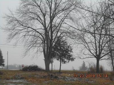 401 S PENN ST, FAIRMOUNT, IN 46928 - Photo 2