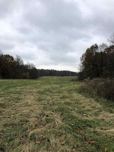 TBD OFF 450 HIGHWAY, WILLIAMS, IN 47470 - Photo 2