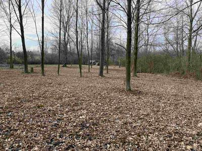 TBD LOT 8 SUMAC LANE, North Webster, IN 46567 - Photo 2