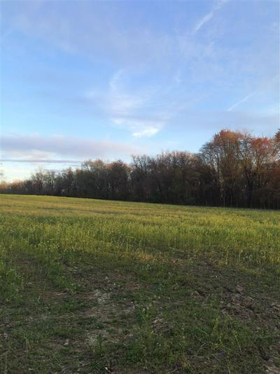 TRACT 1 N GOLF COURSE ROAD, Bicknell, IN 47512 - Photo 2