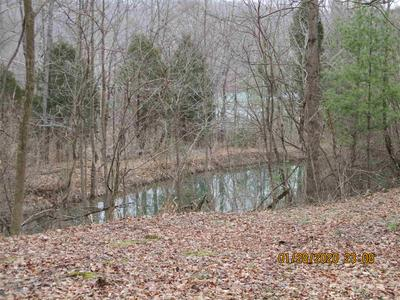 527 N STATE ROAD 145, Eckerty, IN 47116 - Photo 2