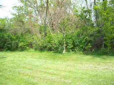 TBD W ORLAND ROAD, Angola, IN 46703 - Photo 1
