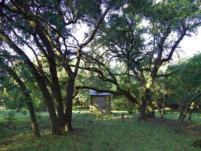 1220 HWY 83S, Leakey, TX 78873 - Photo 2