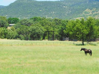 16945 STATE HIGHWAY 16 N, Medina, TX 78055 - Photo 1