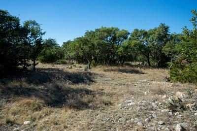0 NW LOUISE LANE, Mountain Home, TX 78058 - Photo 1