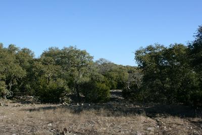 812 NW HWY 479, Mountain Home, TX 78058 - Photo 2