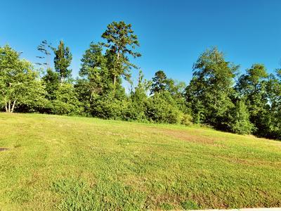 3630 LASHBROOKE WAY, Louisville, TN 37777 - Photo 1