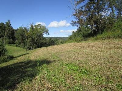 INDIAN RIDGE RD, Blaine, TN 37709 - Photo 1