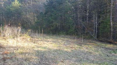 893 WILSON STATION RD, Englewood, TN 37329 - Photo 1