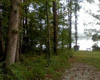 276 CRYSTAL SPRINGS RD, Rockwood, TN 37854 - Photo 2