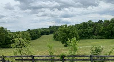 LOT 43 RICHLAND RD, Blaine, TN 37709 - Photo 1