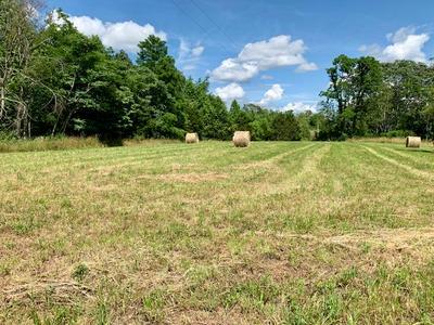 00 FOX HILL RD, Baxter, TN 38544 - Photo 2