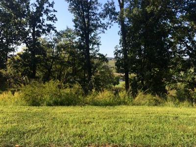 585 BLACK COVE LN, Loudon, TN 37774 - Photo 2