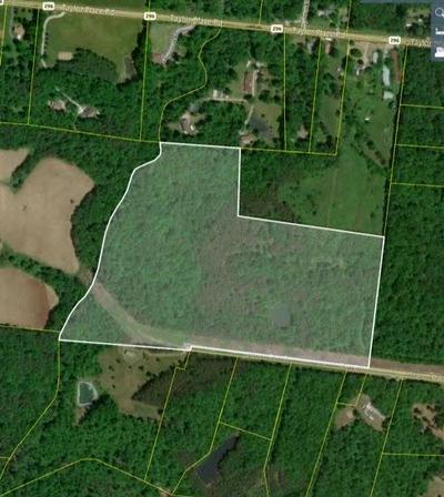 SCARLETT OAKS DRIVE, Jamestown, TN 38556 - Photo 1