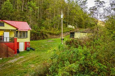 9950 CHESTNUT RIDGE RD, Eidson, TN 37731 - Photo 2