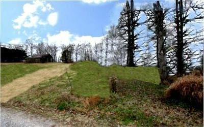 501 WALLACE RD, Luttrell, TN 37779 - Photo 2