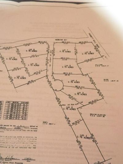 LOT # 5 PADGETT MILL ROAD, Cosby, TN 37722 - Photo 2