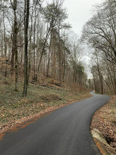 MILL CREEK RUN LANE, ANDERSONVILLE, TN 37705 - Photo 2