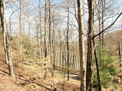 HOGOHEGEE RD, ANDERSONVILLE, TN 37705 - Photo 2