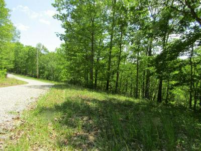 LOT 9-11 WESTERN WAY, Hilham, TN 38568 - Photo 1
