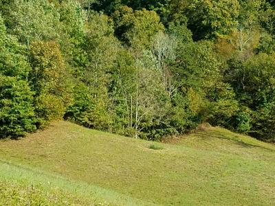 TBD TAZEWELL (HWY 33) 74.96 ACRES, SNEEDVILLE, TN 37869 - Photo 2