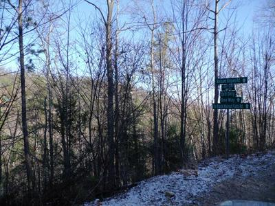 7.46 ACRES BALSAM SLOPES RD, Sevierville, TN 37876 - Photo 1