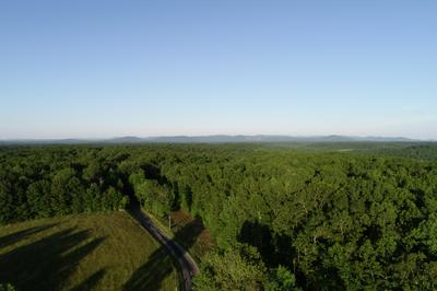 1400 COON HOLLOW RD, Sunbright, TN 37872 - Photo 2