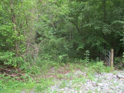 CORBIN LAKE RD, Rutledge, TN 37861 - Photo 2