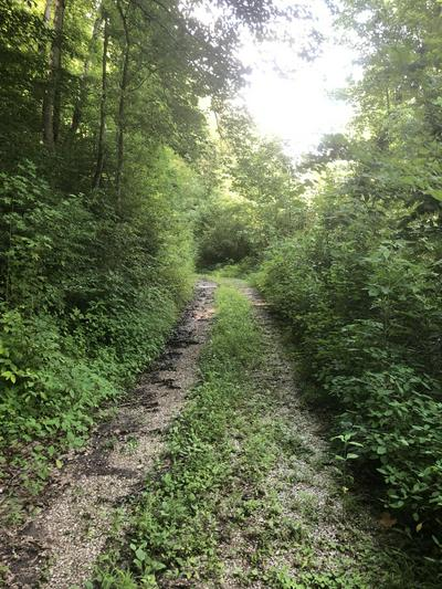 ANNA LANE, Clairfield, TN 37715 - Photo 2