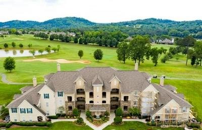 555 RARITY BAY PKWY APT 204, Vonore, TN 37885 - Photo 2