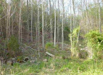 TR-5 MOSSY COVE WAY, SEVIERVILLE, TN 37876 - Photo 2