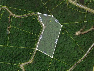 6.95 AC MANGLED VINE TR, Crawford, TN 38554 - Photo 1
