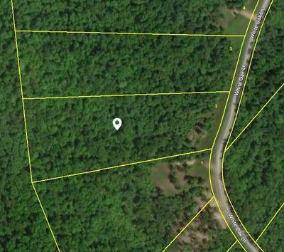 WHITE OAK LANE, Crawford, TN 38554 - Photo 1
