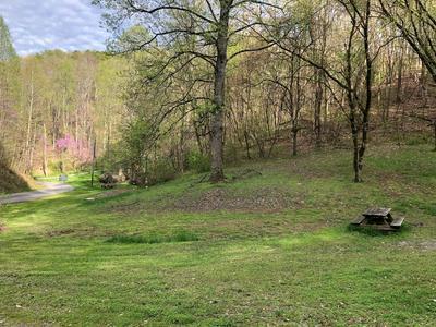 2242 FERGUSON LN, Sevierville, TN 37876 - Photo 2