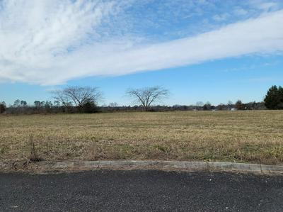 LOT 20 MEADOW LAWN DRIVE, Englewood, TN 37329 - Photo 1