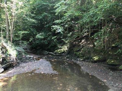INDIAN MOUNTAIN RD, Jellico, TN 37762 - Photo 1