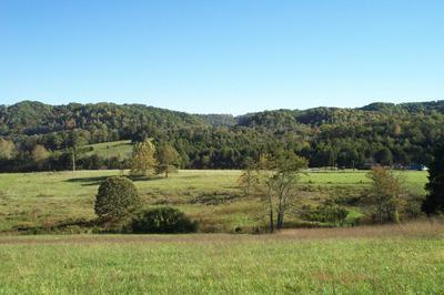 COX RD, Maynardville, TN 37807 - Photo 1