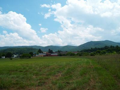 LOT # 5 PADGETT MILL ROAD, Cosby, TN 37722 - Photo 1