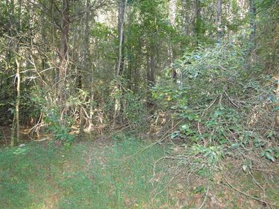 LOT# 6 STATE HWY 30 W/ LOWER CONCORD, DECATUR, TN 37322 - Photo 1