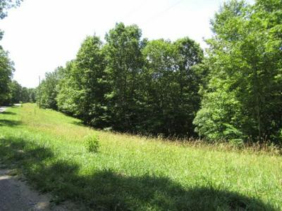 LOT 4&5 WESTERN WAY, Hilham, TN 38568 - Photo 2