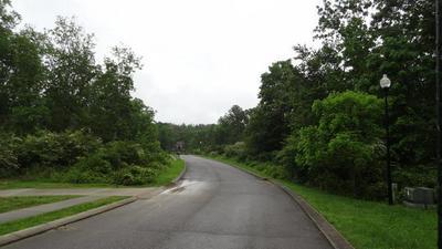 TOMLON RD, Crossville, TN 38555 - Photo 2