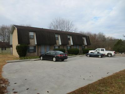 409 W WILLSON ST, Niota, TN 37826 - Photo 1