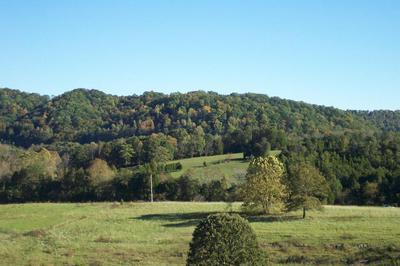 COX RD, Maynardville, TN 37807 - Photo 2