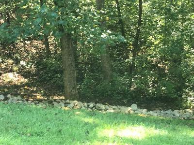 318 EAGLE RIDGE DR, Rockwood, TN 37854 - Photo 2