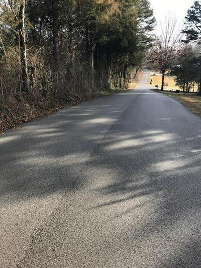 000 COUNTY ROAD 436, Athens, TN 37303 - Photo 2