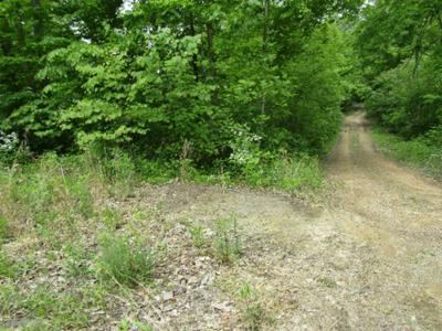 2 WHITE OAK RIDGE RD, Celina, TN 38551 - Photo 2